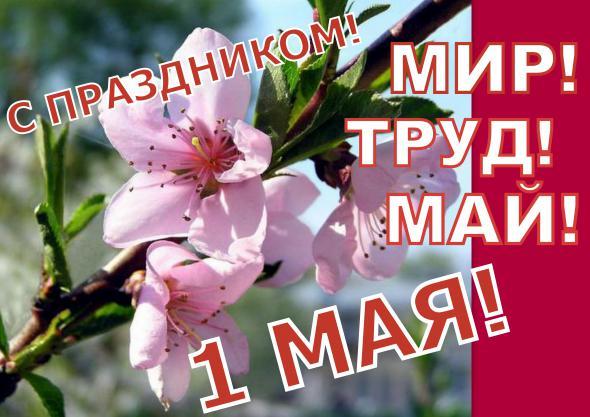 Mayday_1