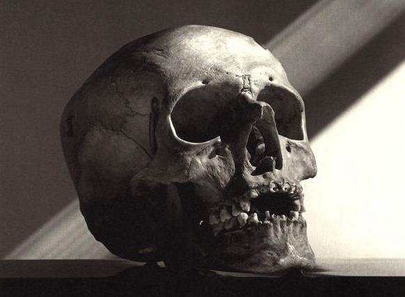 Охотники за черепами из U.S.Army hunters skulls 9