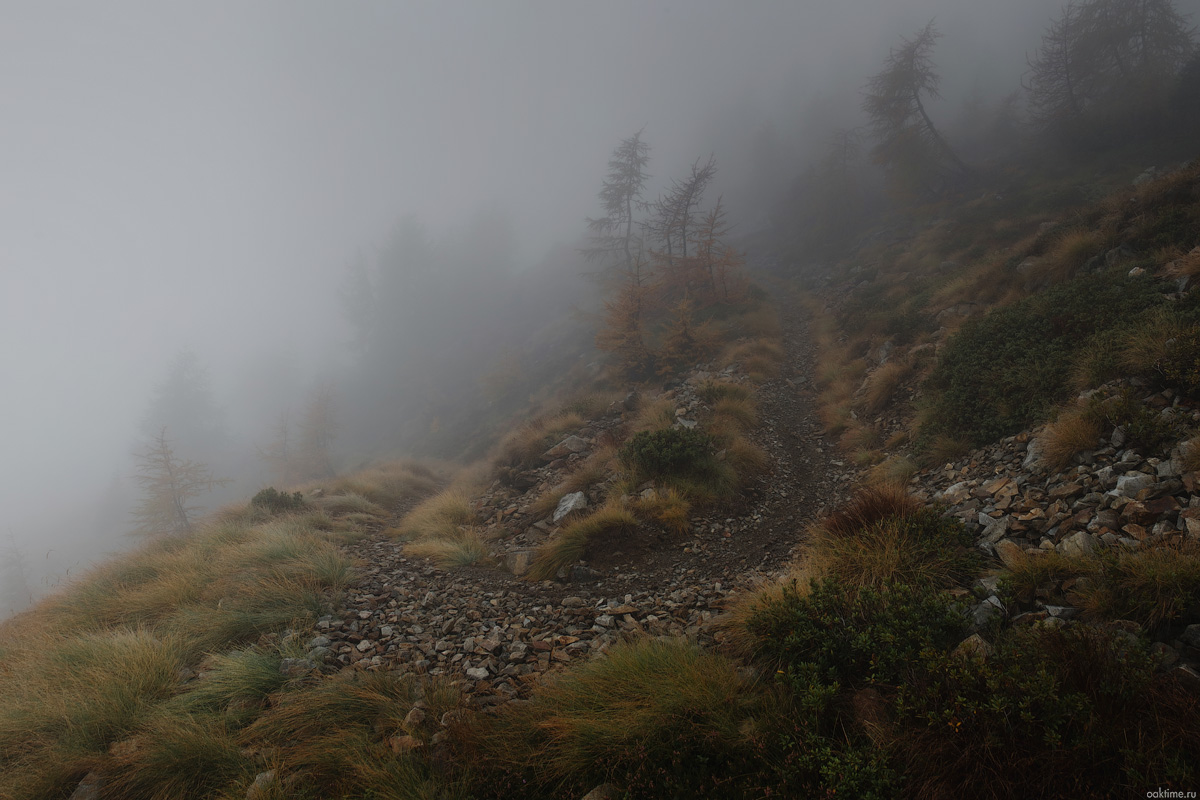 DSCF4675-Panorama