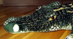 Крокодил Негена