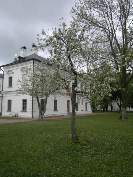 2015-05-03-522