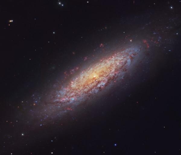 NGC-6503-by-Robert-Gendler.jpg