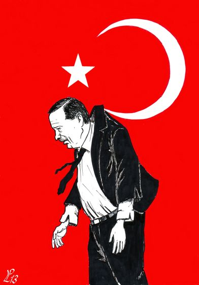 turkey_indignant__paolo_lombardi.jpg