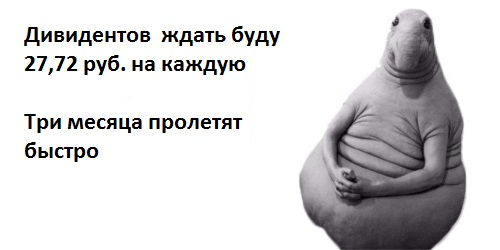 ждун-2