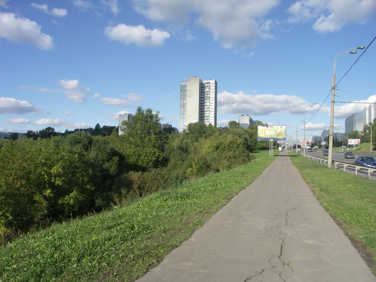 2007 Мичуринский