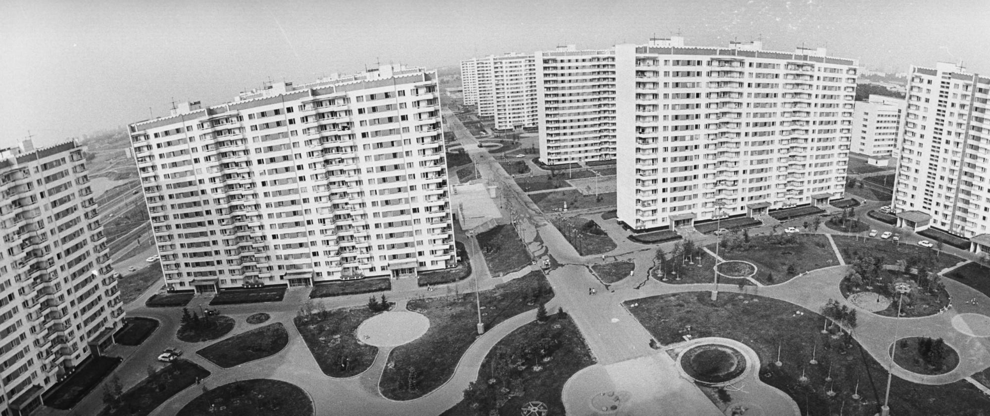 1981 Олимпийка