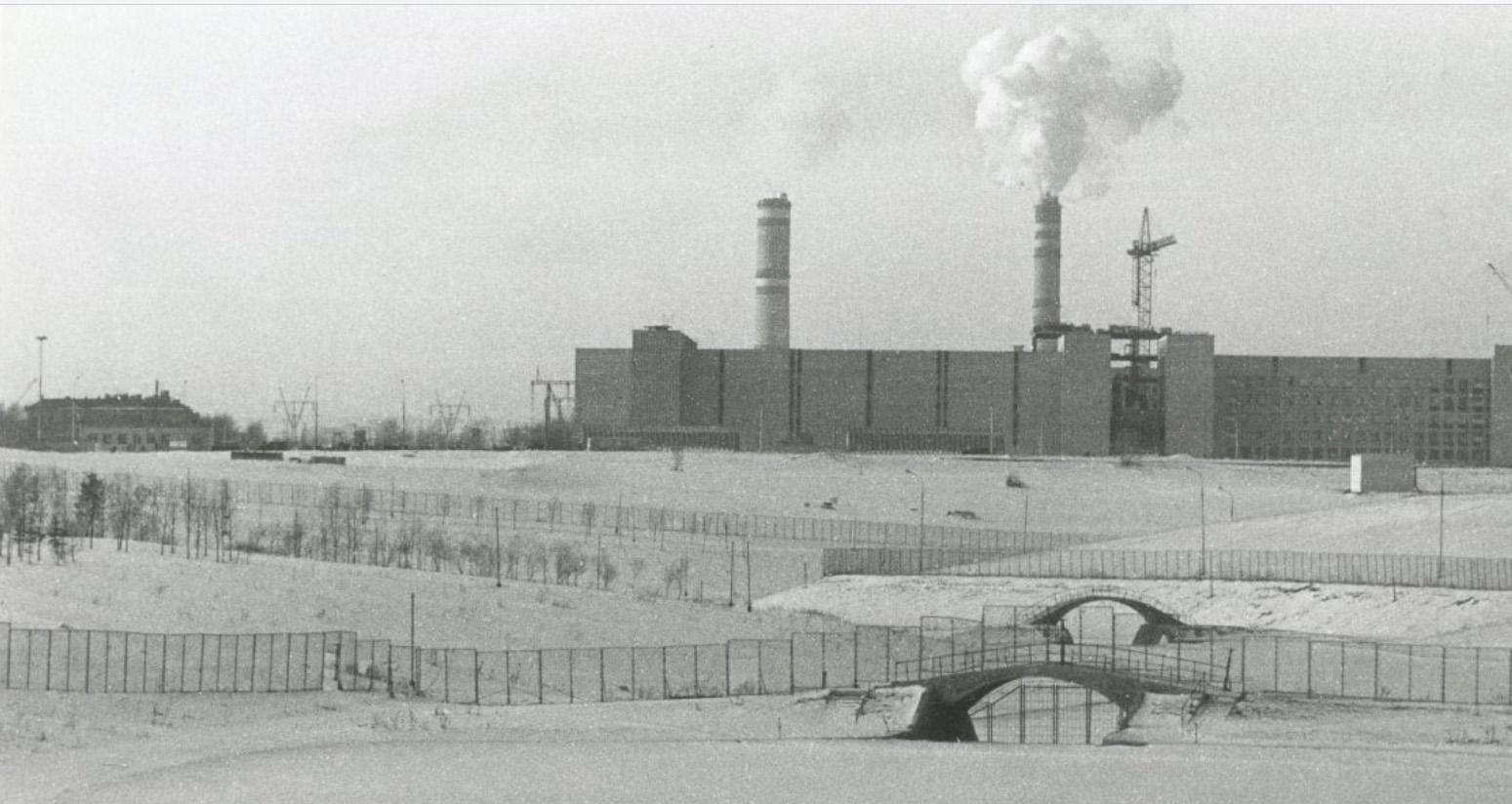 1984 Мичуринский из Олимпийского парка