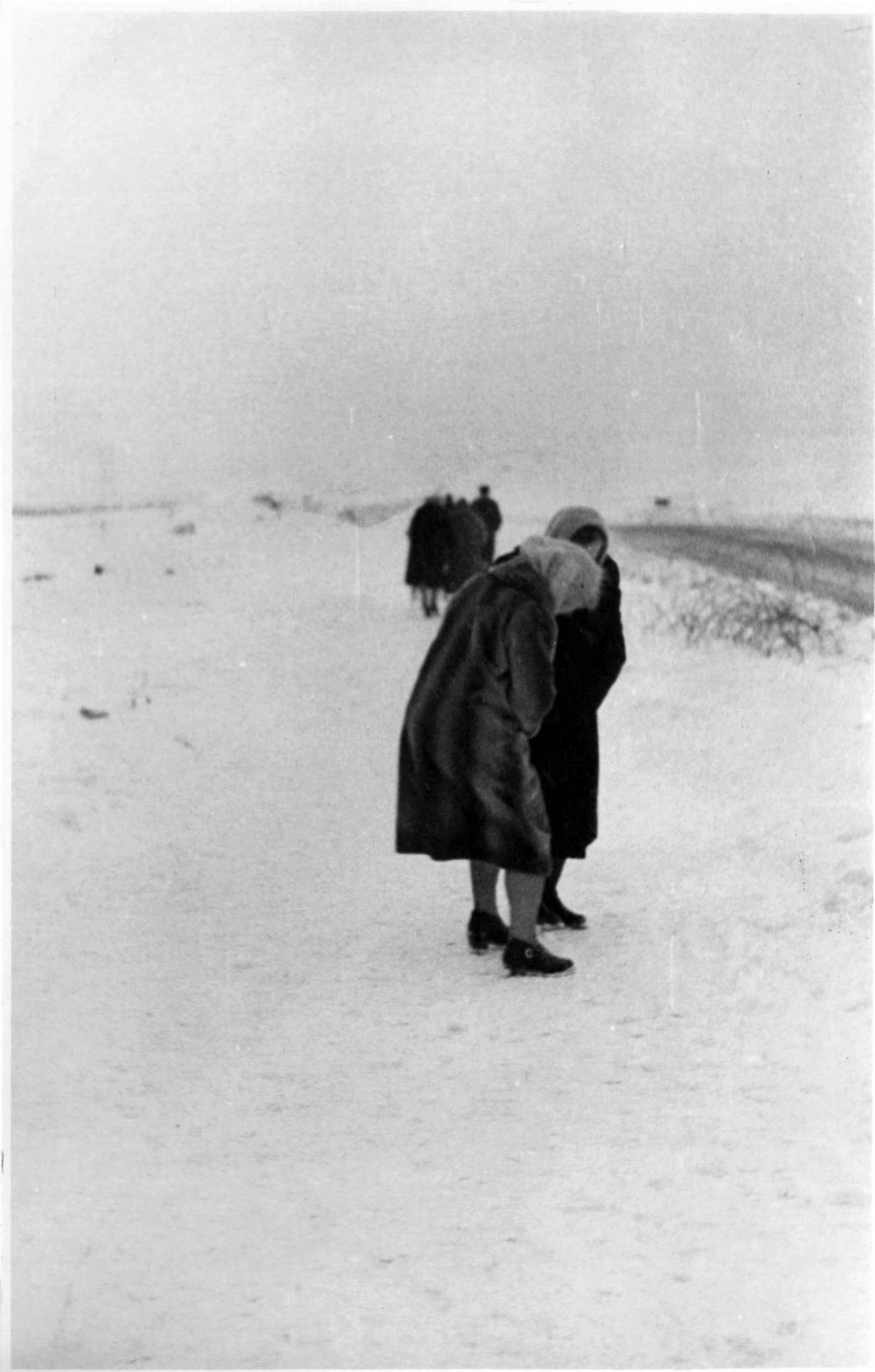 1966 год, прогулка 2 января. Алексей Пучков3