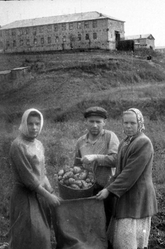 1960е, Раменки. Прислал Георгий Анисимов