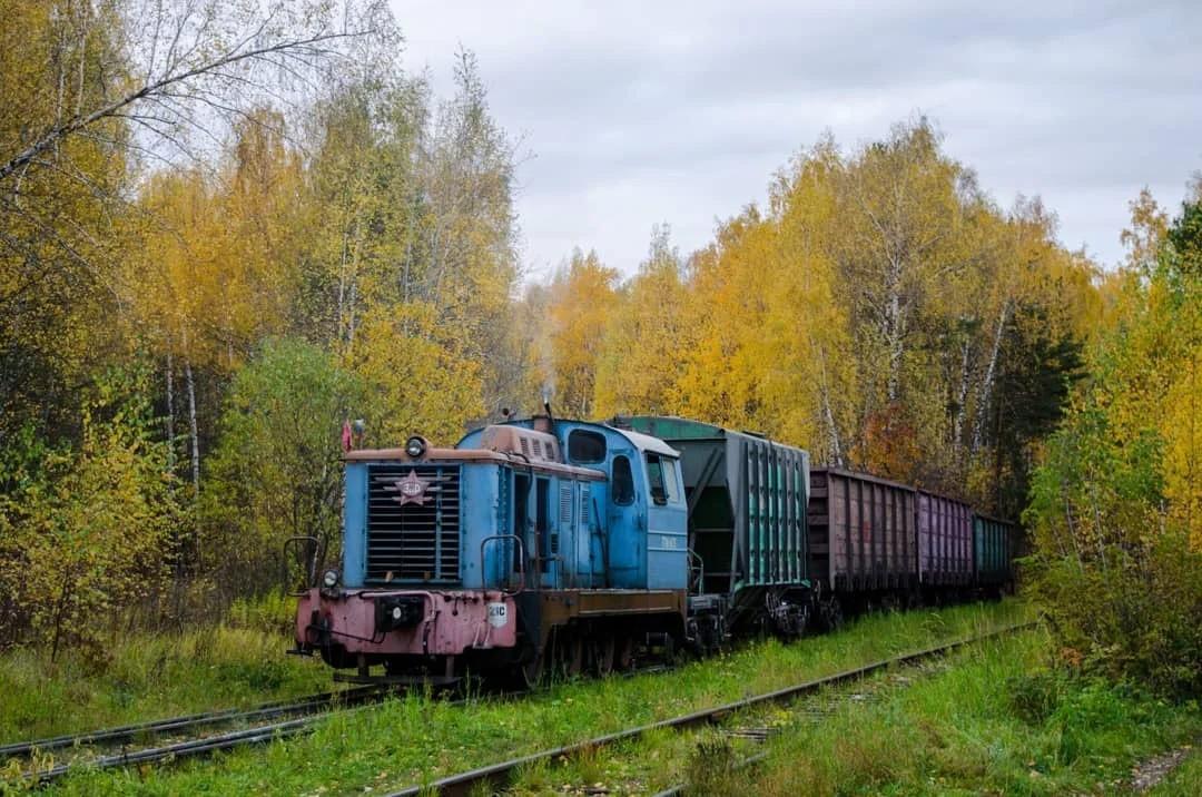 Чудом оставшийся в живых тепловоз ТГМ1-1470 на подъездном пути от станции Очаково-III. inst bykovskiy_