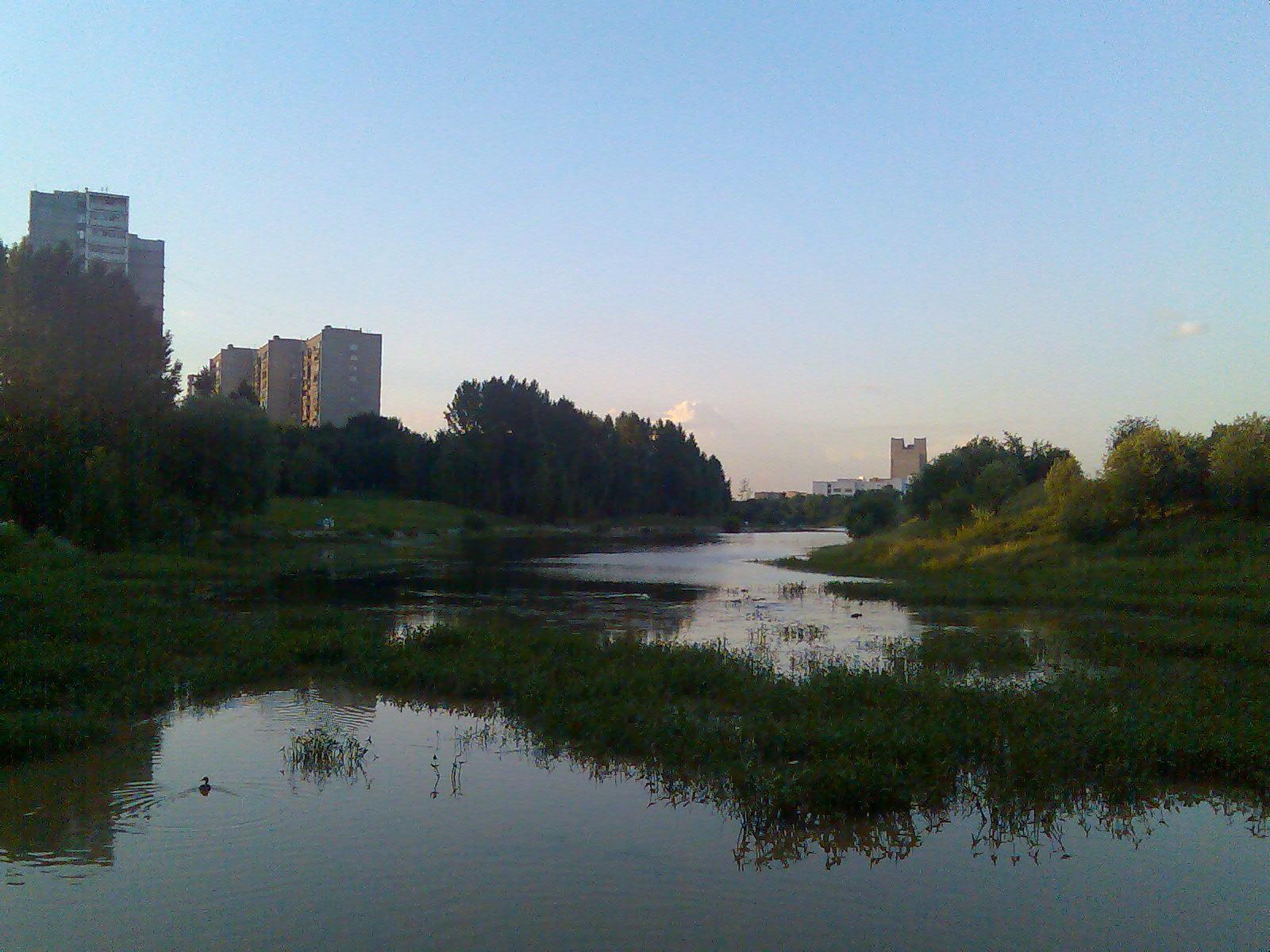 Очаковский пруд 2006 (1)