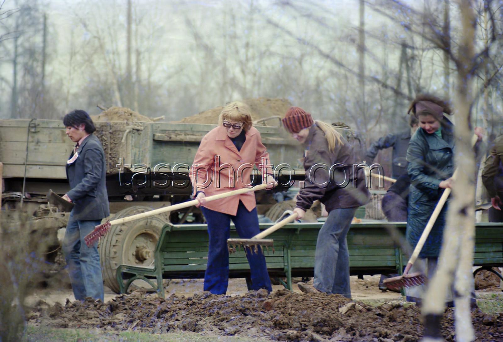 1977 г. Сотрудники МГУ озеленяют сквер имени Марии Поливановой. Великжанин Леонид_cmpk