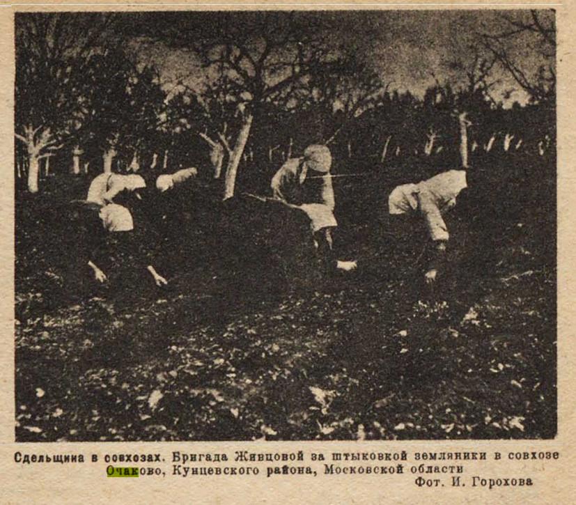 1931 Выполним план сева на огородах. Огонёк №15(403)