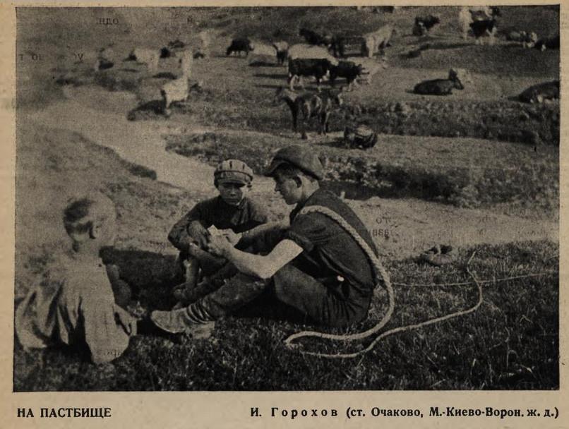 1929 Пастбище у ст. Очаково. И.Горохов