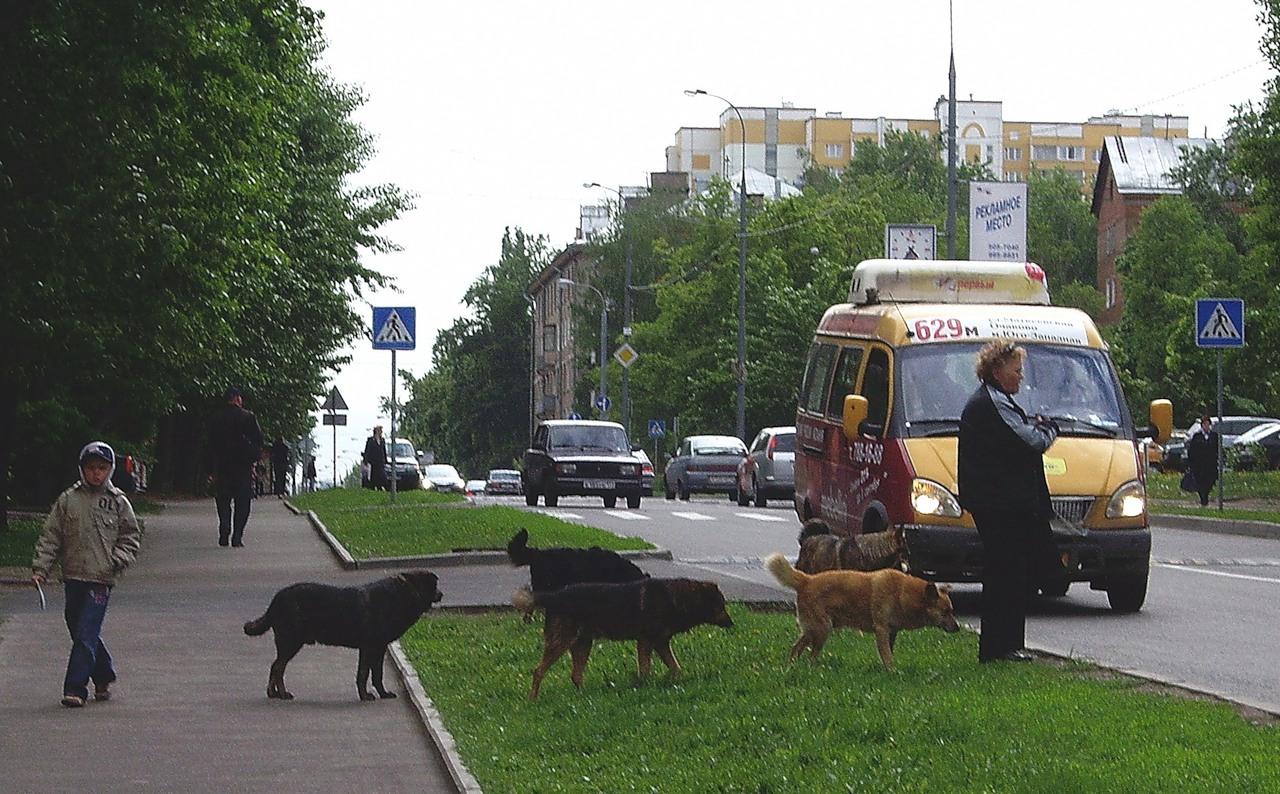 2008 14 мая Б.Очаковская4