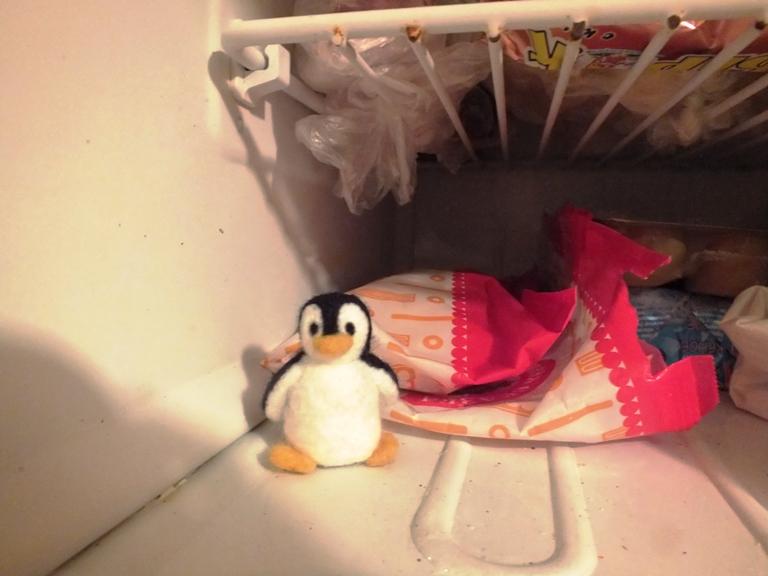 пингвин в морозилке