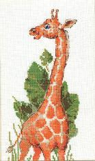 Изумленный жираф
