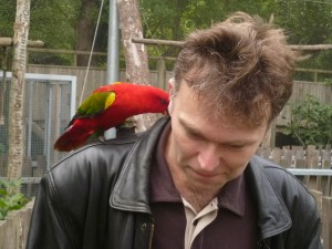 Попугай-попрошайка