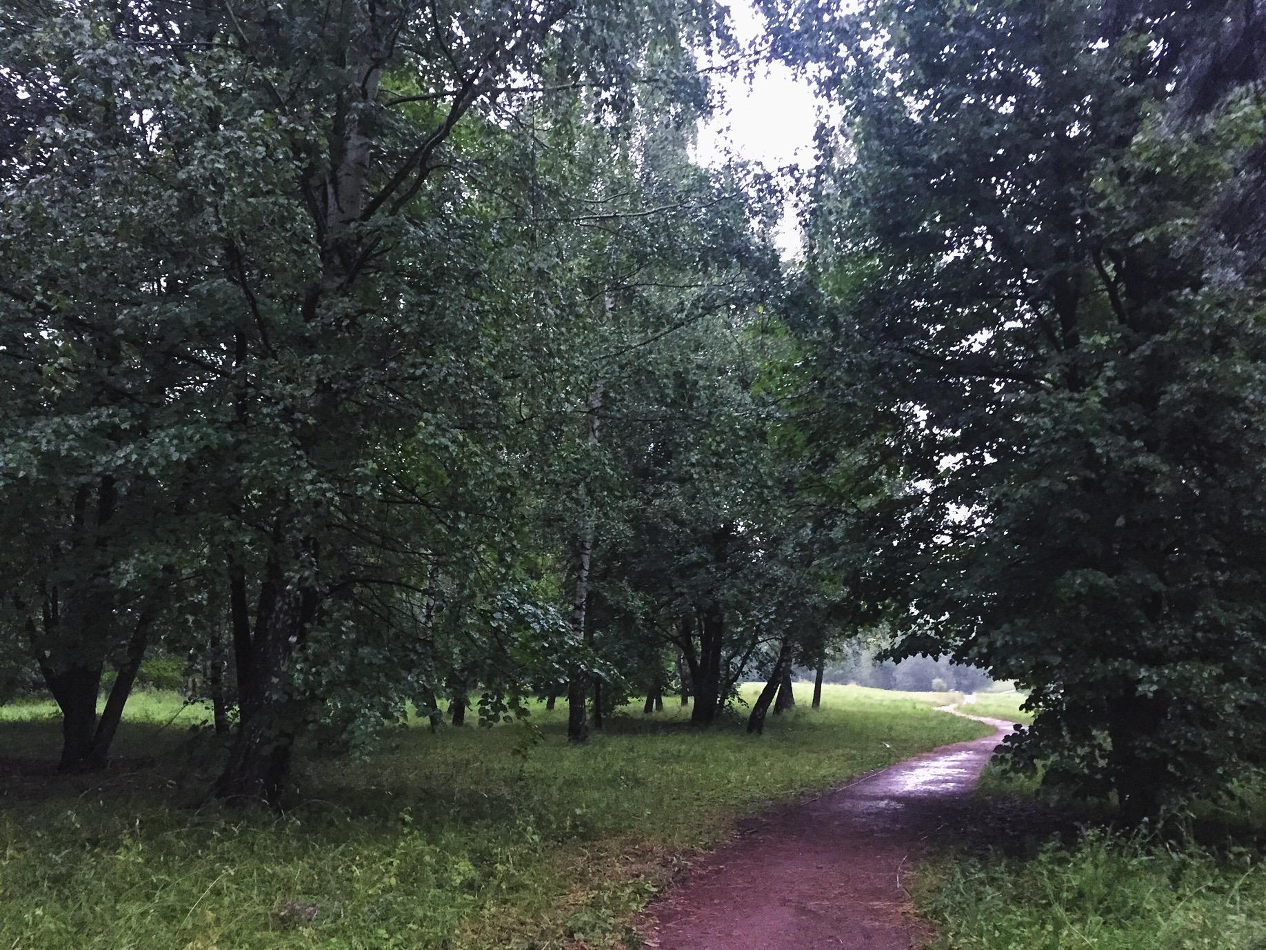 Смотреть мокрые лесби 17 фотография