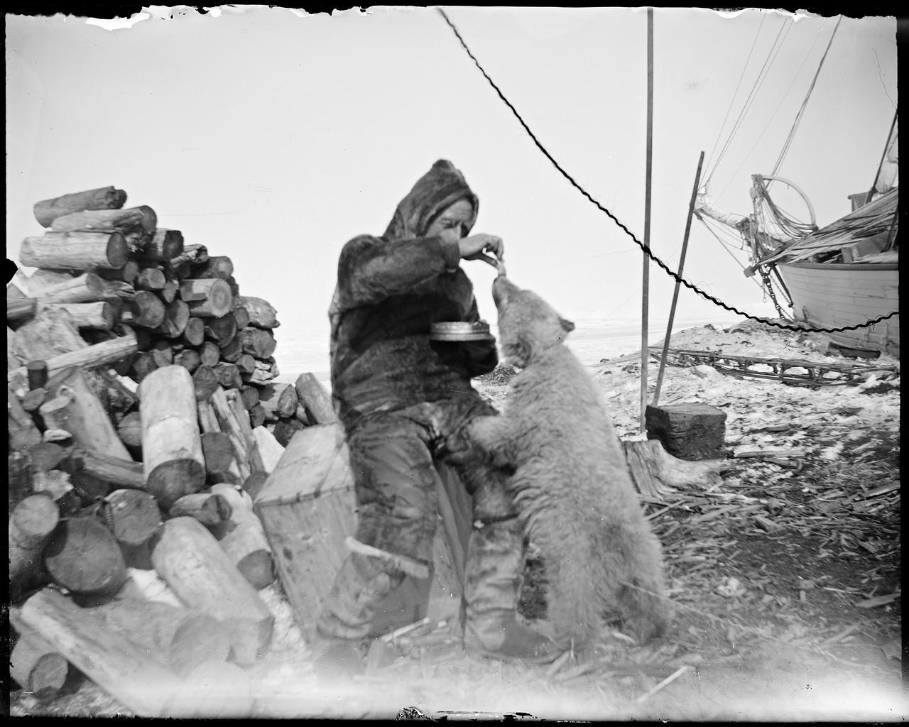 NPRA1794._Roald_Amundsen_mater_isbjørnungen__Marie__-_Roald_Amundsen_feeding_the_polar_bear__Marie__(29362931942)Чукотка, июнь1920.jpg