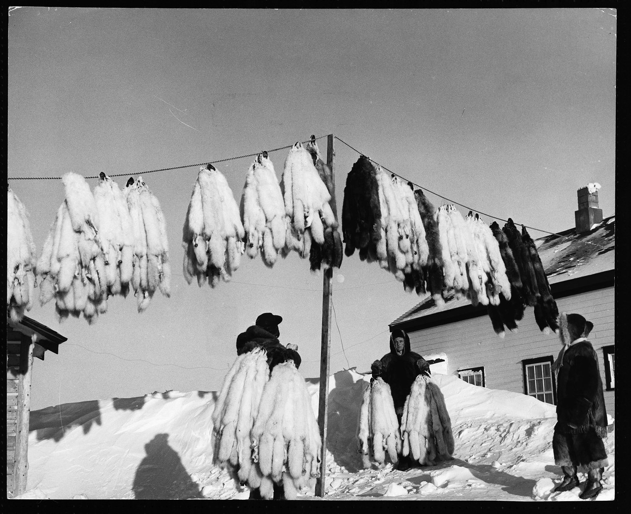 Inuit_20.jpg