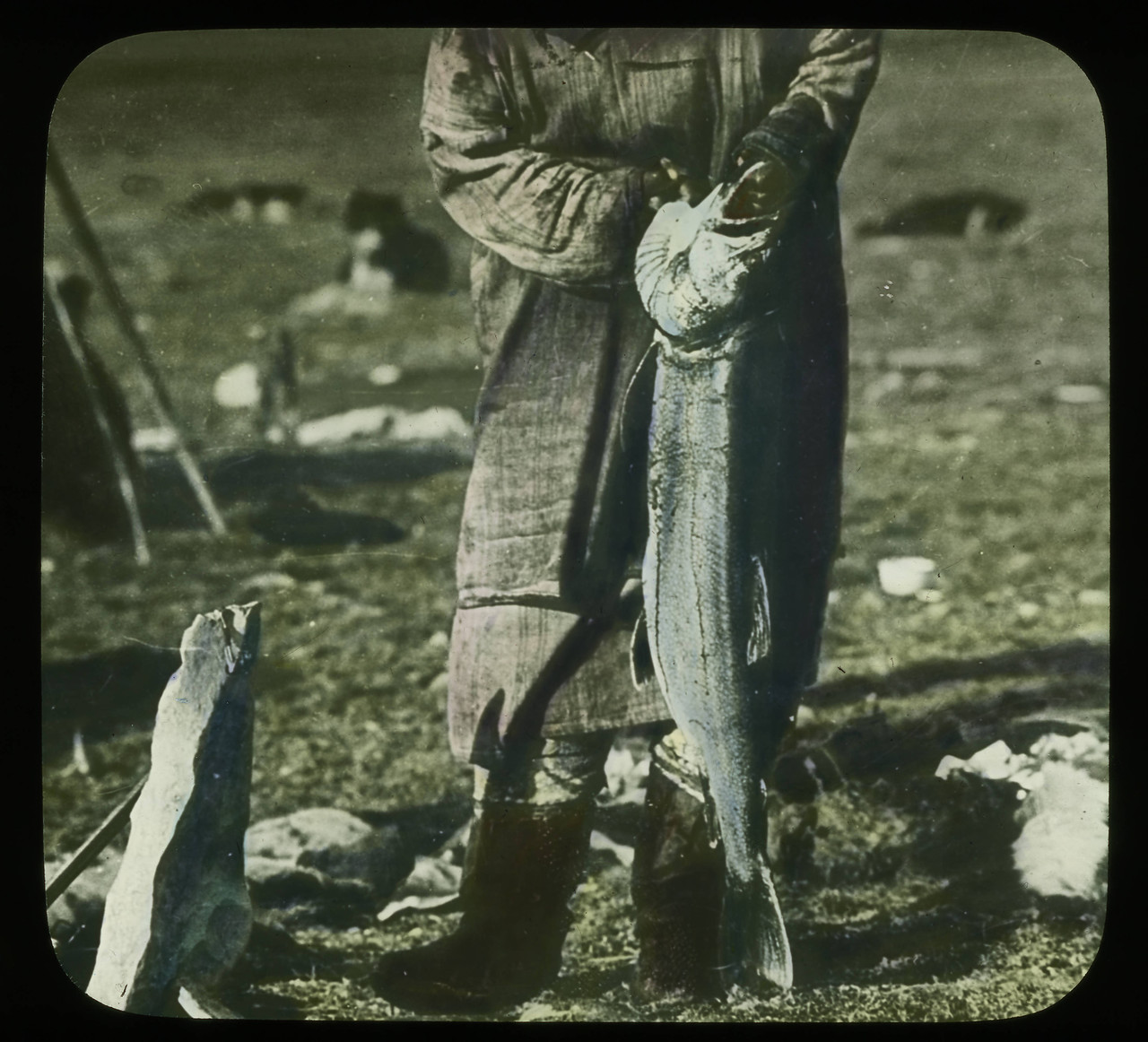 Handcolored_Individual_holding_trout_by_the_gills.jpg