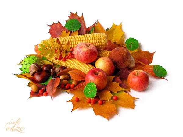 фото осень урожай