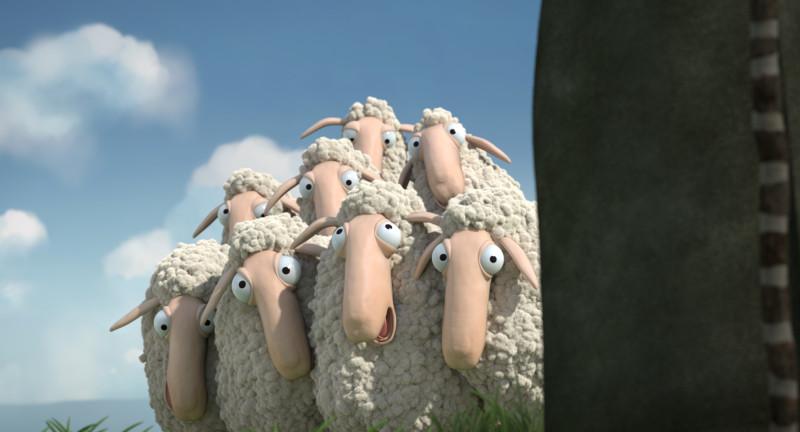 Aufmacherbildoh_sheep_still_01.jpg