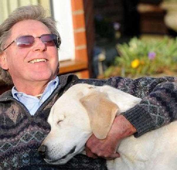 Душещипательная история о дружбе слепого человека и ослепшего пса