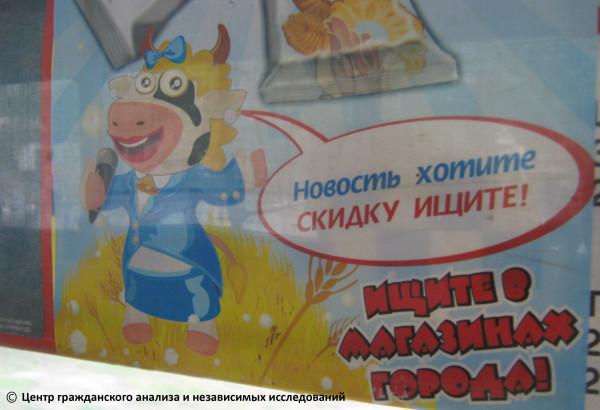 Корова без вымени-1