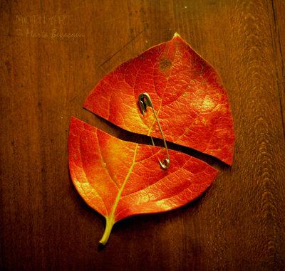 autumn__by_m0thyyku-d32f22y