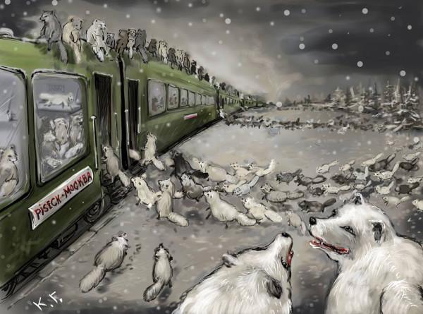 Поезд Писецк-Москва