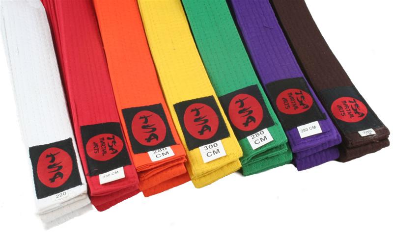цветные пояса типичные для будо