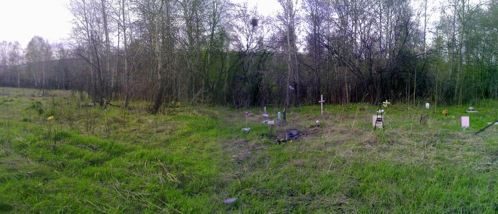 Кладбище домашних животных Кемерова