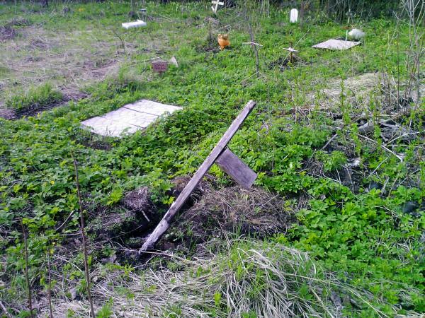 Pet grave