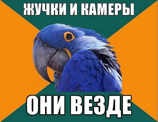 http://ic.pics.livejournal.com/okolokremlya/22861576/7824/7824_640.jpg