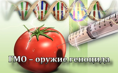 GMO-orugie