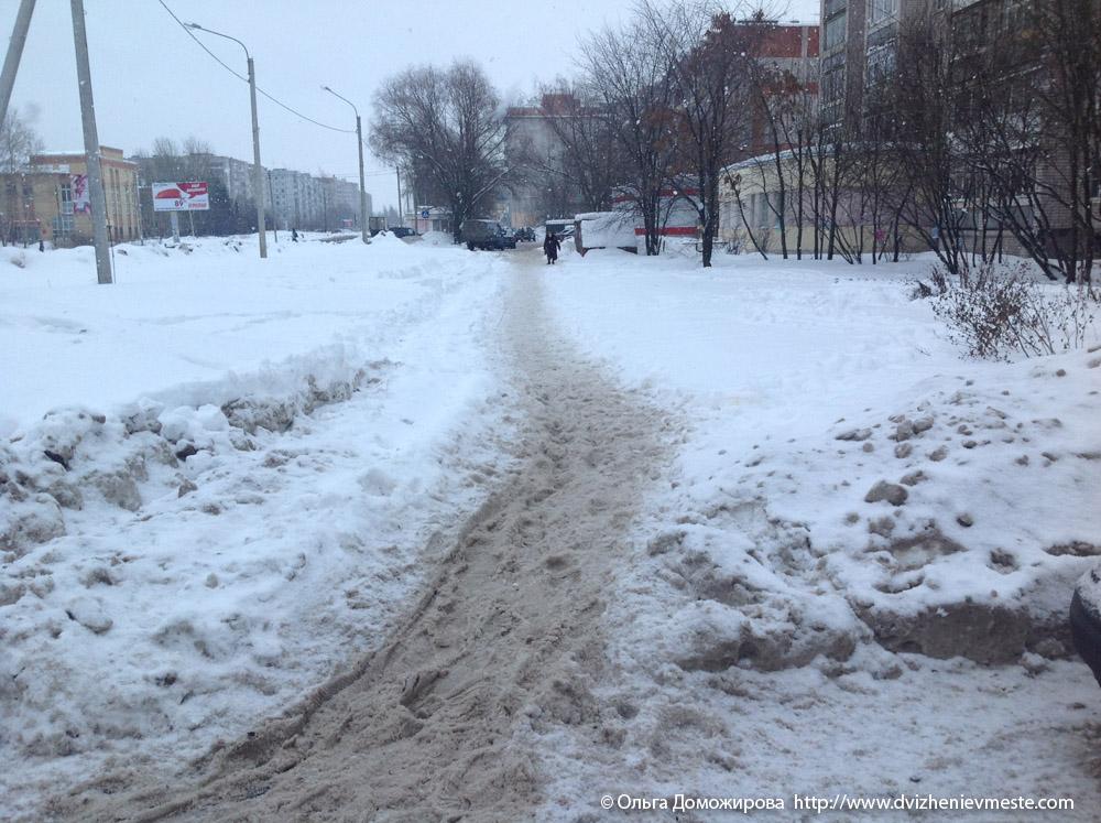 Зимняя дорога на коляске в Вологде (4)