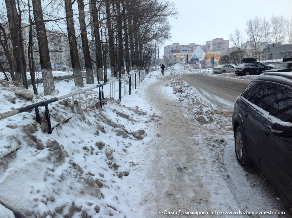 Зимняя дорога на коляске в Вологде (9)
