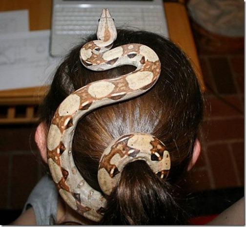 Заколки для волос необычные