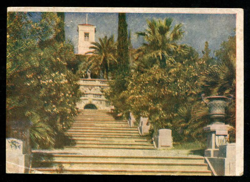 Сочи. Лестница к ботаническому музею. Савельев1