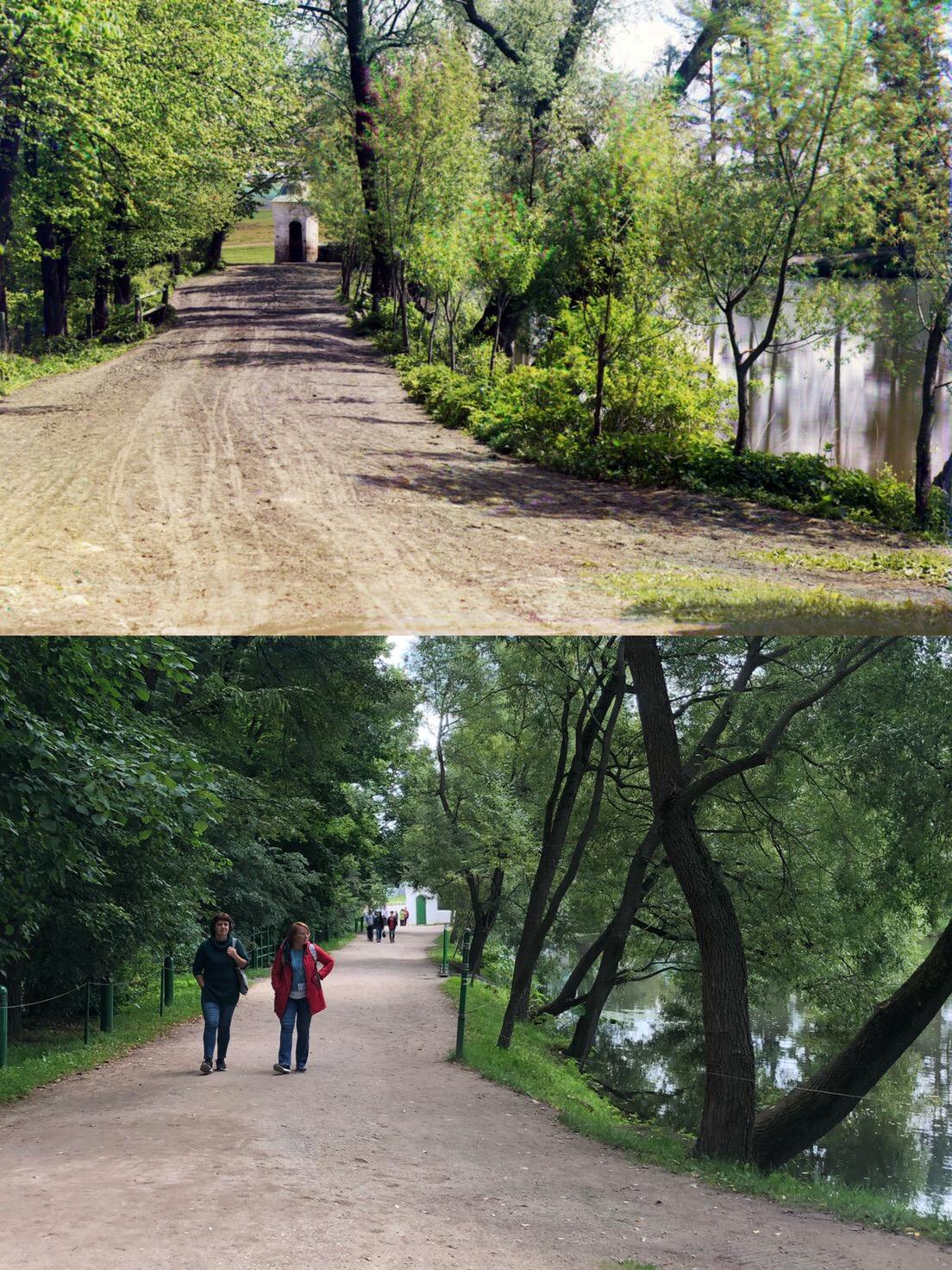 Ясная Поляна 1908-2019