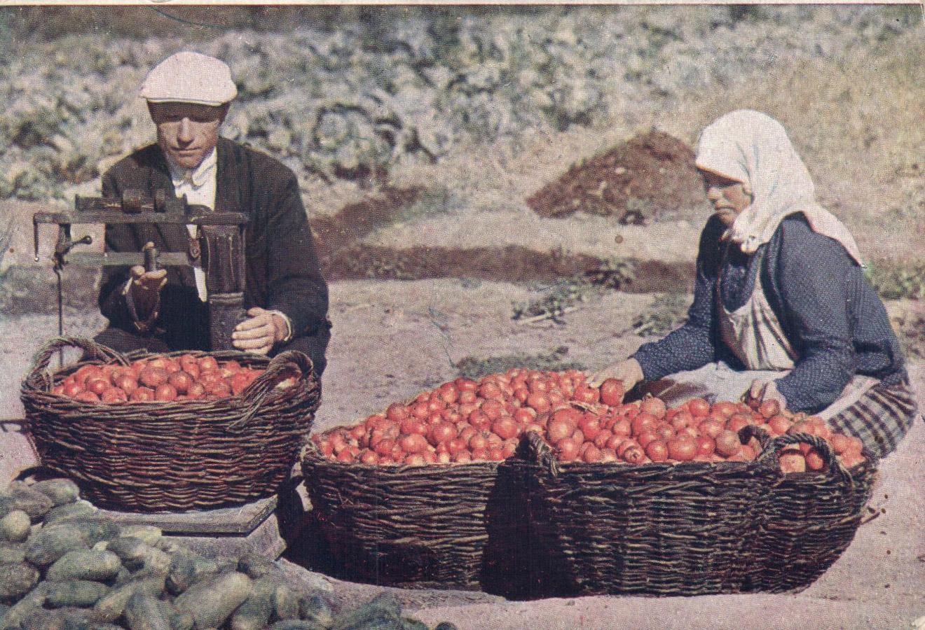 1933 Взвешивание помидор