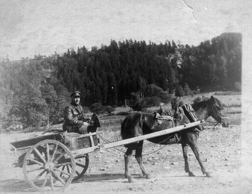 1936 год, Боржомский район, Гуджаретия, селение Кимотубани