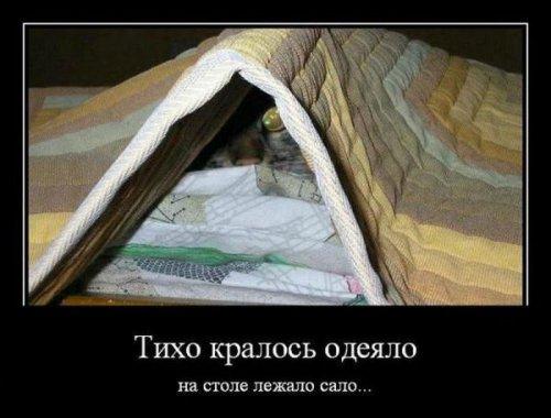1408308190_1407429916_demotivatory_14