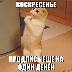 kote_29622553_orig_