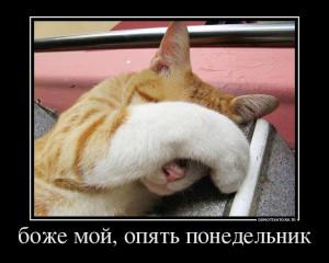 556822_bozhe-moj-opyat-ponedelnik_demotivators_to