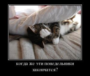 983138_kogda-zhe-eti-ponedelniki-zakonchatsya_demotivators_to (1)