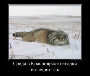 920060_sreda-v-krasnoyarske-segodnya-vyiglyadit-tak_demotivators_to