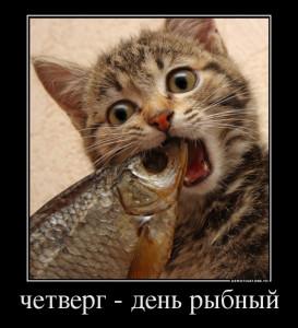 270737_chetverg-den-ryibnyij_demotivators_to